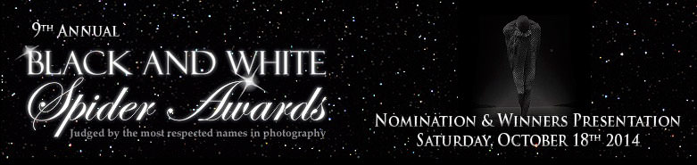 International Black and White Spider Awards